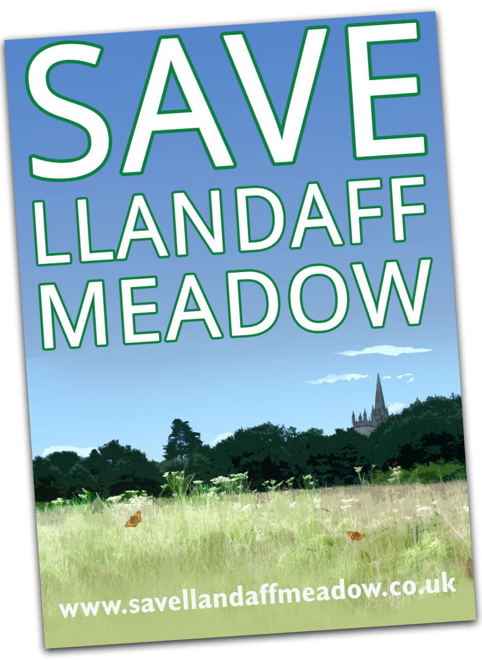 Save Llandaff Meadow . Home Image